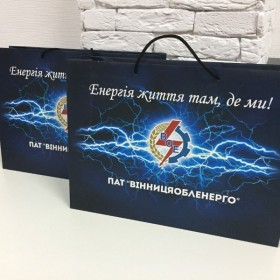 Подарочные бумажные пакеты с логотипом